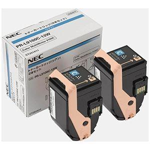 NEC9100-13W