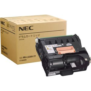 NEC5300-31
